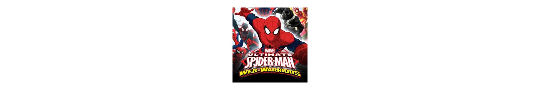 Spiderman Web Warrior