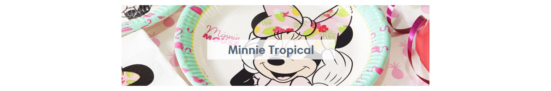 Articole party Minnie Tropical