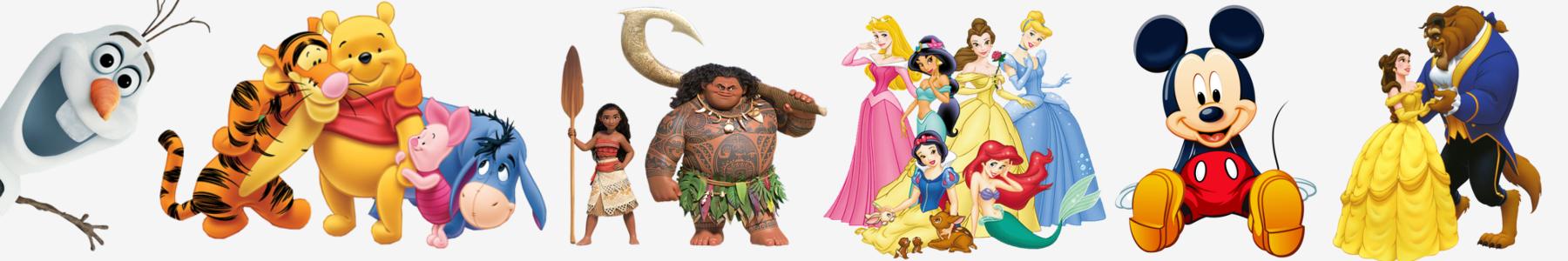 Articole de petrecere - seturi party Disney - Endless Com Srl