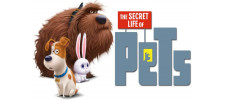 Secret Life of Pets - NEW!!!